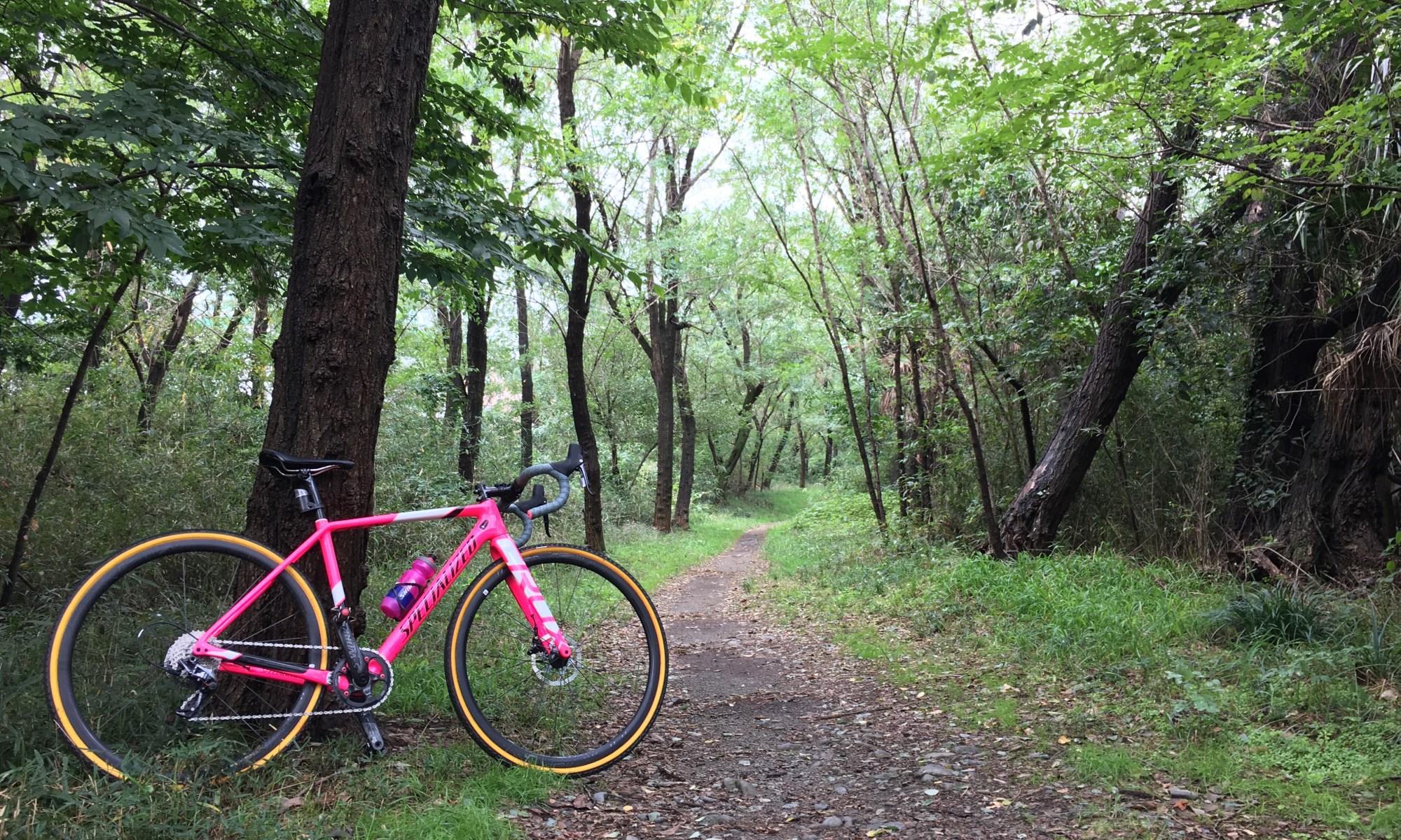 BiciclettaSHIDO